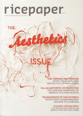 14.2 - The Aesthetics Issue