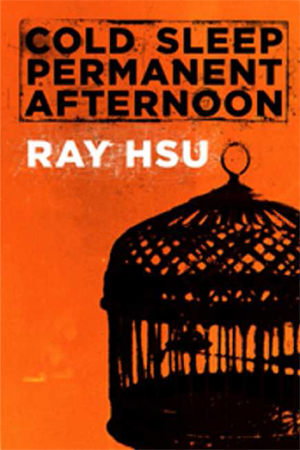 "Ray Hsu ""Cold Sleep Permanent Midnight"""